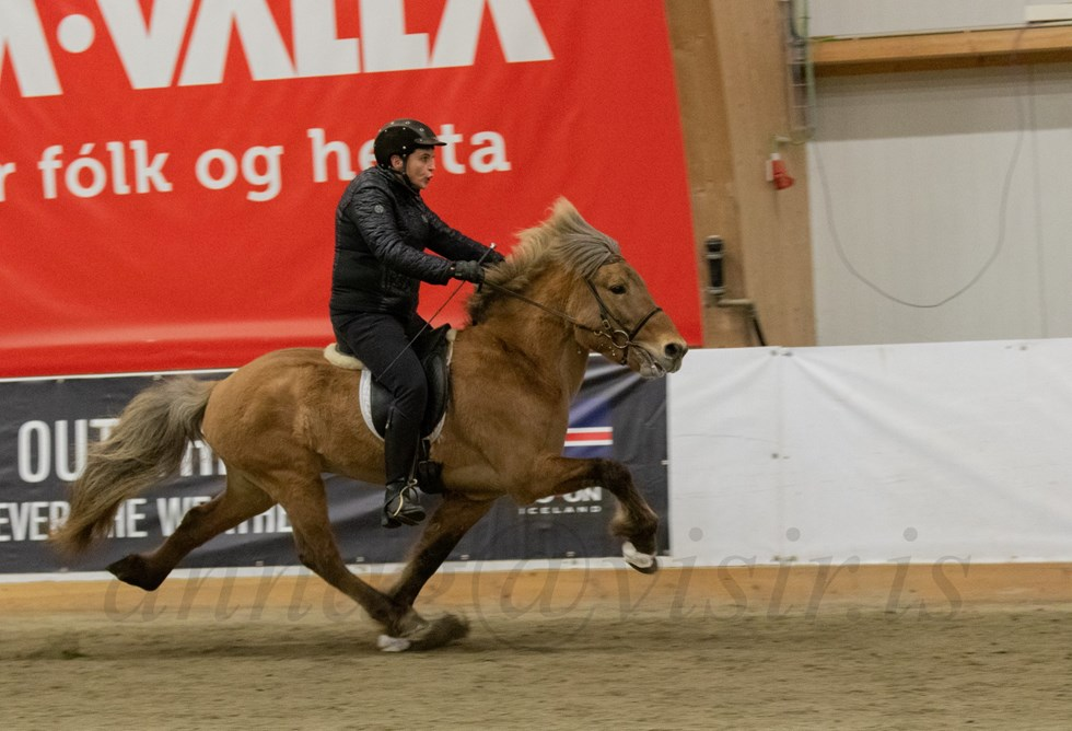 Training the gaits